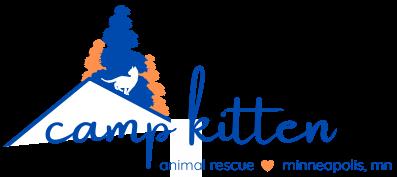 Camp Kitten